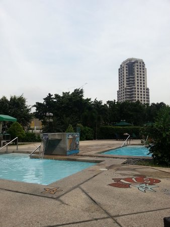 Crowne Plaza Manila Galleria : rooftop pool