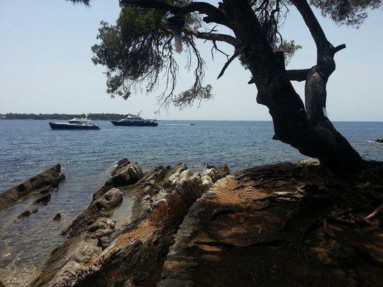 Île Sainte-Marguerite : Île de Sainte Marguerite