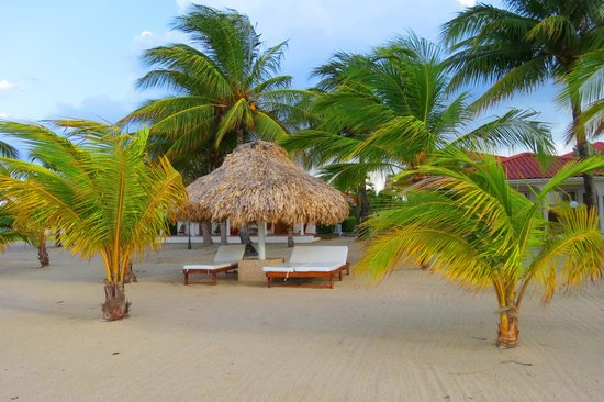 The Placencia Hotel and Residences: Lounge Chairs in front of the beach front rooms
