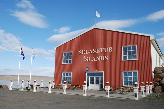 ‪Icelandic Seal Center‬