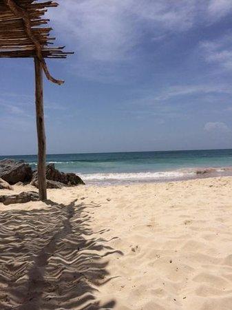Maya Spa: the beach at the spa