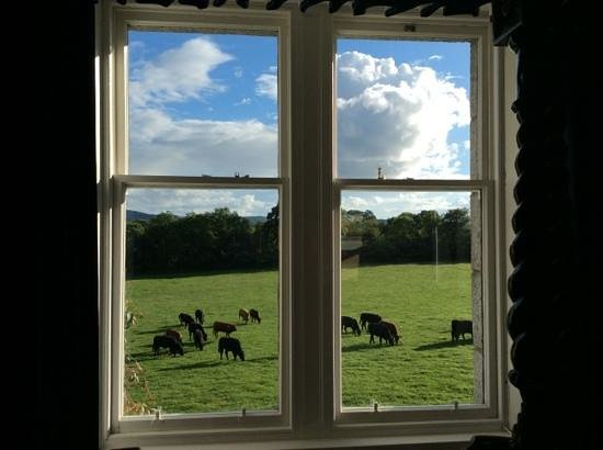 Blarcreen House : Blick aus dem Zimmer