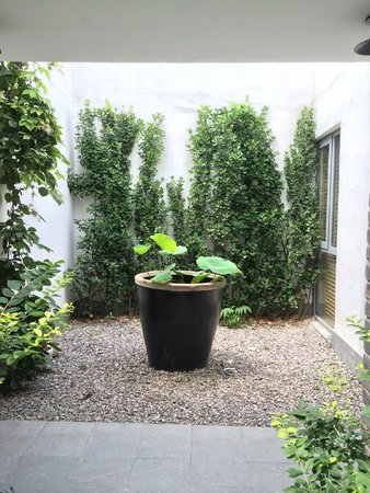 The HuLu Hotel: courtyard