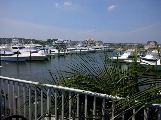 Sunset Grille: A view from the Teasers Deck!