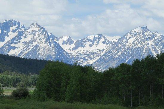 Teton Park Road: Mt. Moran