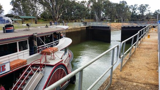 Mildura, Австралия: Arrive just before 11am to see the steam paddle steamer coming through. Well worth the visit.