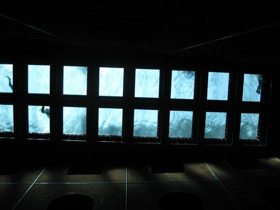Azkuna Zentroa: pavimentto ddella piscina