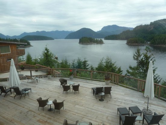 West Coast Wilderness Lodge : view from the dining room above the patio