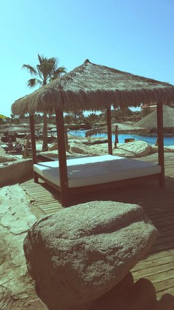 Laguna Vista Beach Resort : отдых у бассейна