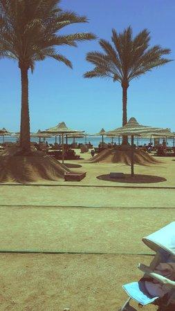Laguna Vista Beach Resort : Вид на пляж