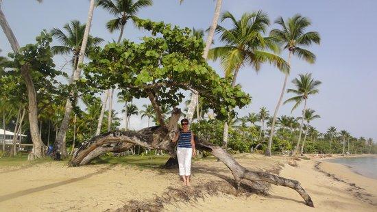 Grand Bahia Principe El Portillo : Beautiful beaches