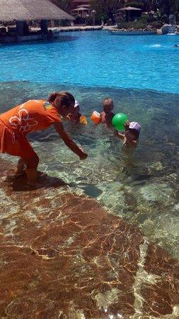 Laguna Vista Beach Resort : детям некогда скучать