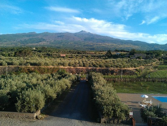 Hotel Feudo Vagliasindi: View from the terrace