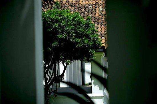 Paradise Road The Villa Bentota: perfect design