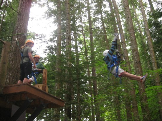 kids tree houses with zip line. Unique Zip Treehouse Island Zipline Adventures They Recommend 70 Lb Min For Kids To Kids Tree Houses With Zip Line M