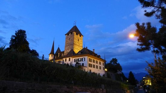 Spiez Castle: From the Seegarten-Marina Hotel at night