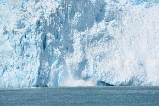 Kenai Fjords Tours : Calving fjord.