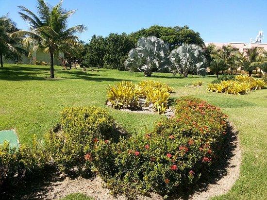 Iberostar Praia do Forte : jardins