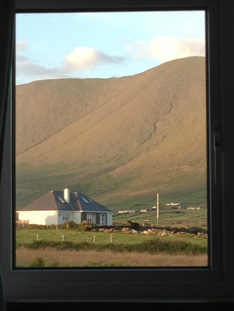 Coill An Rois : The view from our bed