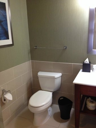 Westin Virginia Beach Town Center : nice new vanity, floors and toilet- check in pictures