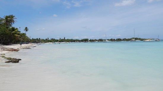 Public beach of Dominicus at Bayahibe: Bayahibe Marina