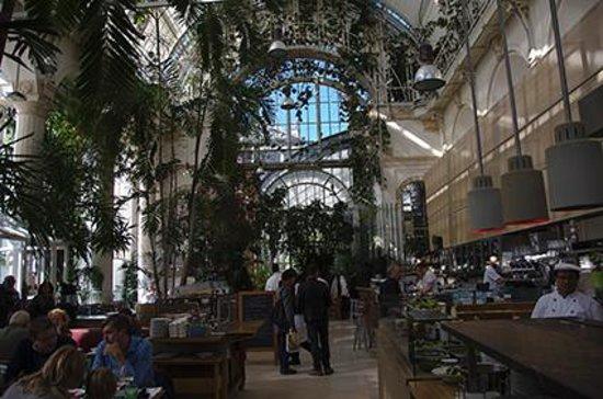 Palmenhaus : Hermoso café vienes