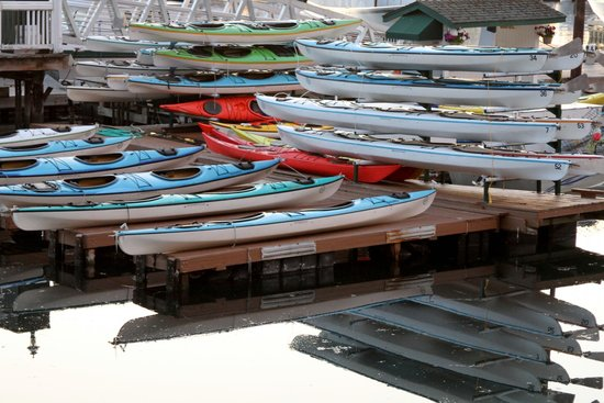 San Juan Outfitters - Day Tours: kayaks at dock