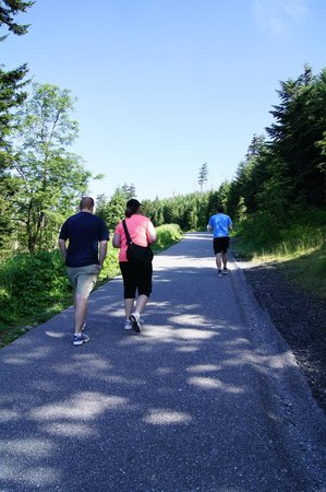 Clingmans Dome: hiking up the paved path