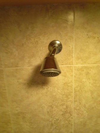 Caribe Resort: Showerhead installed sideways meant only 1/3rd of shower stall was useable