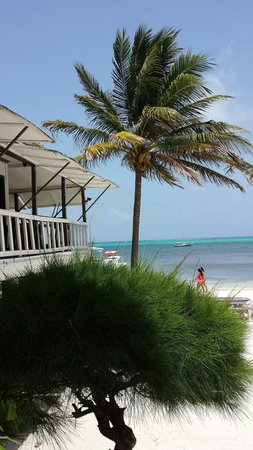 Exotic Caye Beach Resort: View from the porch.