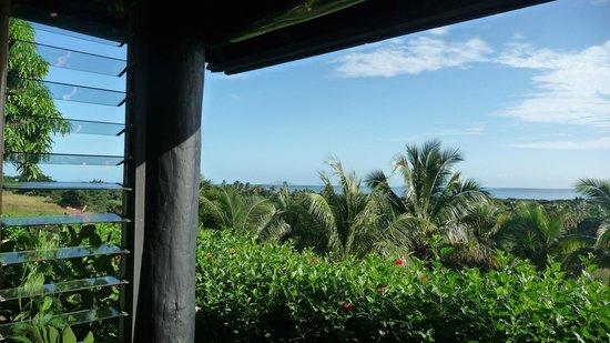 Palmlea Farms Lodge & Bures: That view.