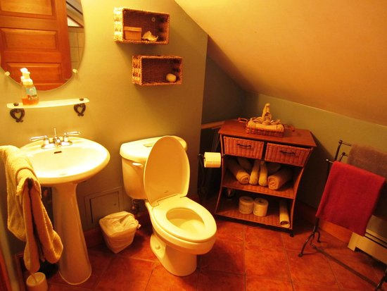 Mistiso's Place Vacation Rentals: View of the washroom