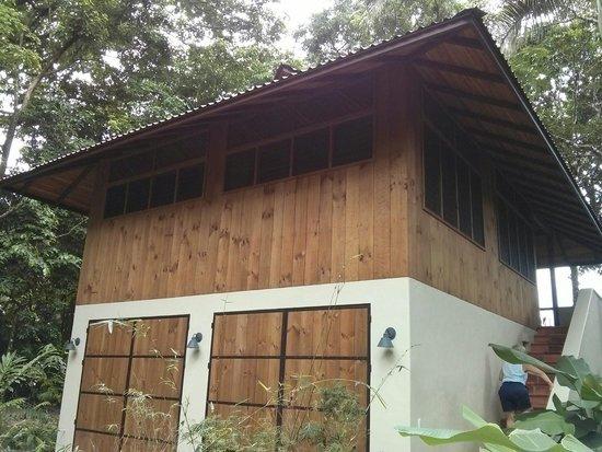Bosque del Cabo Rainforest Lodge : Orquideas Cabina