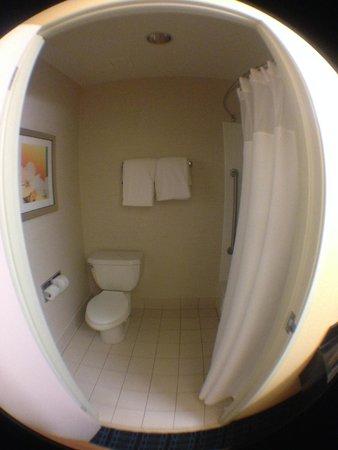 Fairfield Inn Santa Clarita Valencia: Small bathroom, but okay