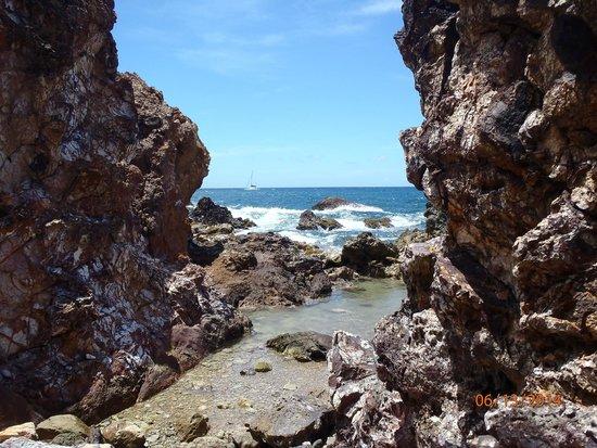 Virgin Islands Ecotours: Gorgeous view