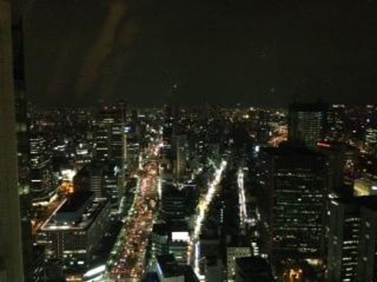 The Ritz-Carlton, Osaka : 36階からの夜景