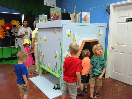 Grand Junction, CO: Learn about and pretend that your a honey bee in our Bee Zone