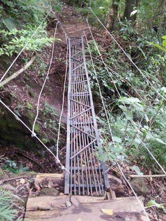 Hotel Monte Campana: Intento de puente en un sendero
