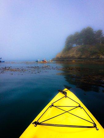 Kayak Mendocino: setting out