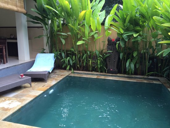 Lily Lane Villas: Private garden and pool are luxury