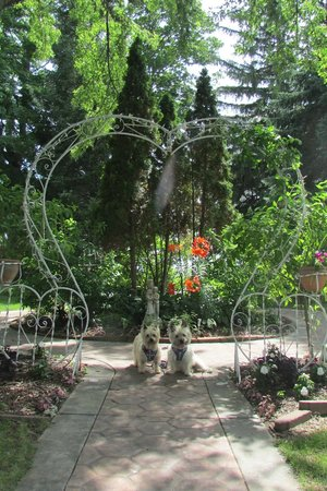 Cloran Mansion Bed & Breakfast: Sweetheart trellis in front of house