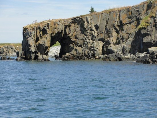 Robertson Sea Tours & Adventures: The Hole In The Wall