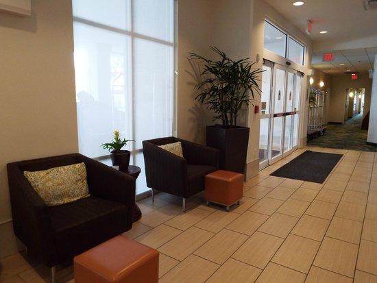 SpringHill Suites San Antonio Downtown/Alamo Plaza: Lobby
