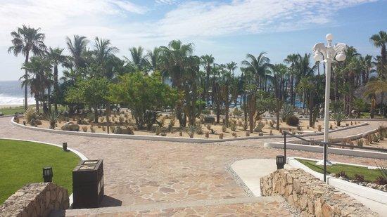 Paradisus Los Cabos: Pool area with ocean behind.