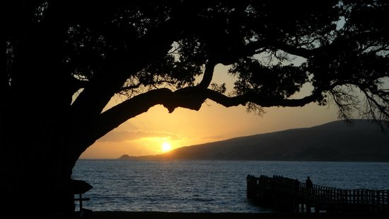 Copthorne Hotel & Resort Hokianga: Sunset from Room