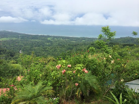 Kura Design Villas Uvita: View from Infinity Villa