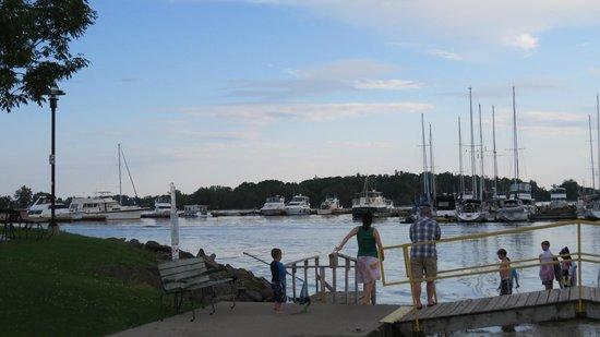 Municipal Marina: Peaceful marina