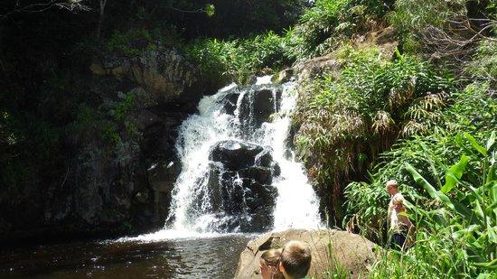 Poipu Sands Condominuims - Poipu Kai by TPC: Waterfall near Waipo'o Falls