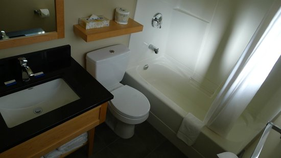 Swiss Chalet Motel: Bathroom in Room #11