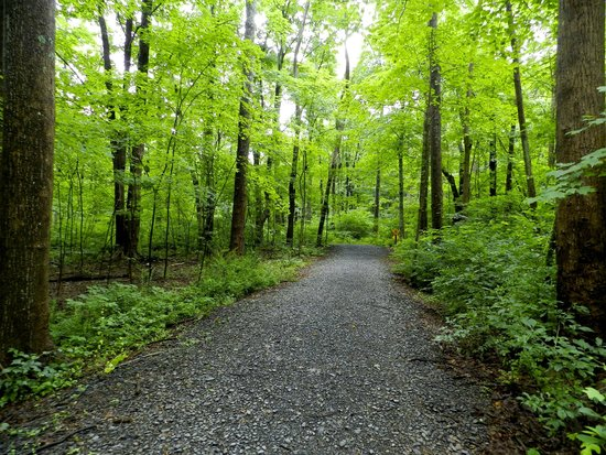 Deerfield Spa : hiking in the  Poconos